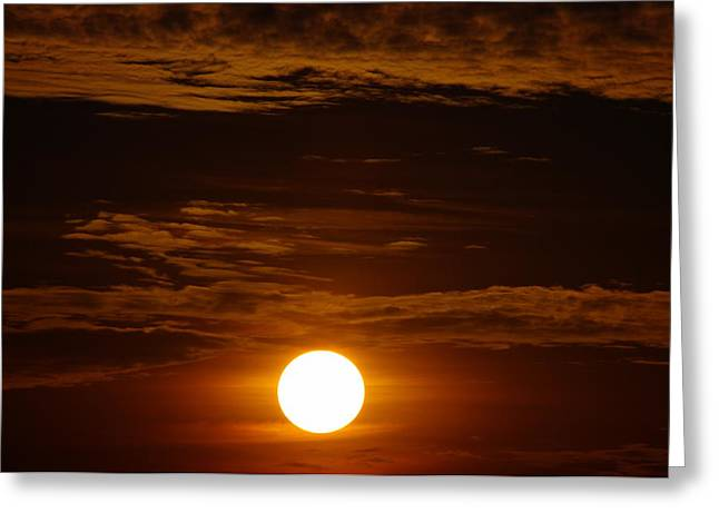 Sunset 5 Greeting Card by Don Prioleau