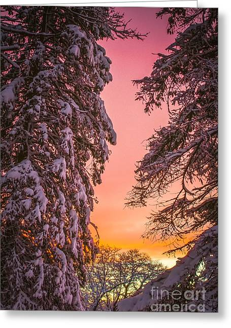 Sunset After Snow Greeting Card
