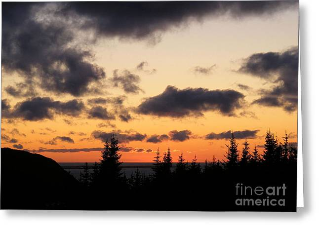 Sunset And Dark Clouds Greeting Card by Barbara Griffin