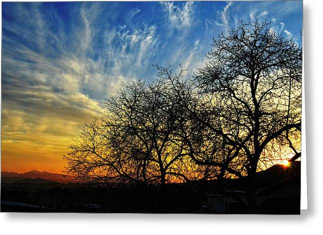 Sunset And Silhouettes Greeting Card by Glenn McCarthy