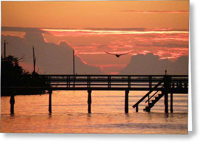 Sunset And The Fishing Dock Greeting Card by Rosalie Scanlon