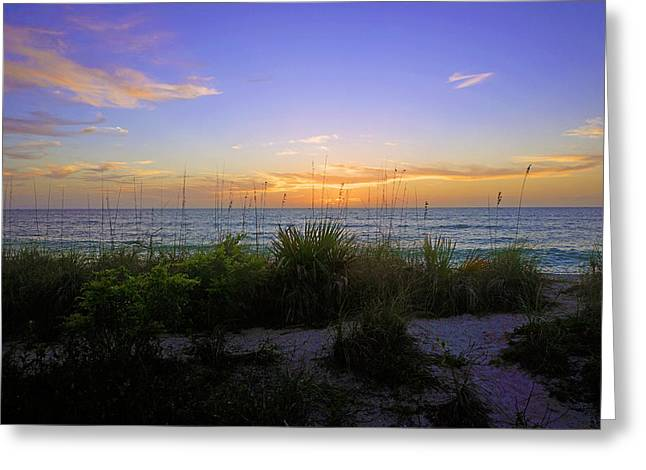 Sunset At Barefoot Beach Preserve In Naples, Fl Greeting Card