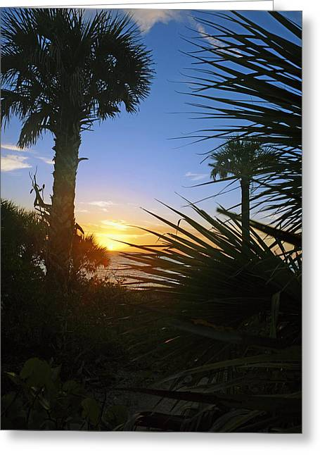 Sunset At Bearefoot Beach In Naples Greeting Card