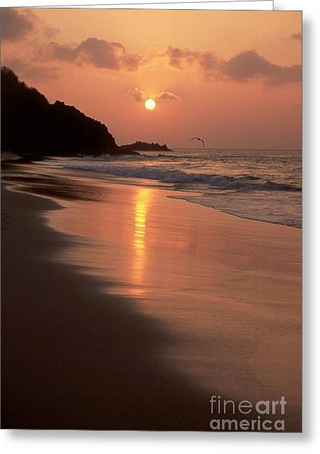 Sunset At Cacimba Do Padre - Fernando De Noronha - Brazil Greeting Card by Maria Adelaide Silva