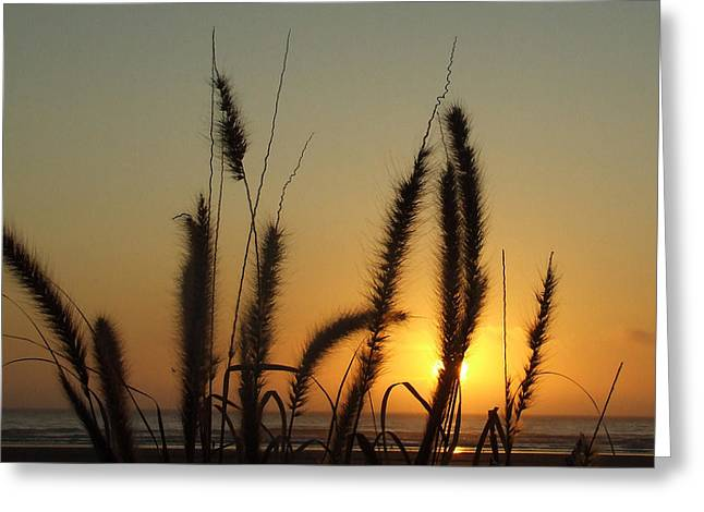 Sunset At Cannon Beach Greeting Card