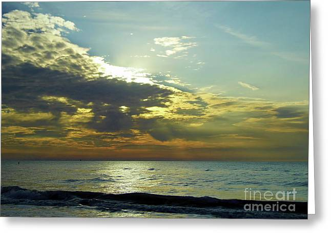 Sunset At Clearwater Greeting Card by D Hackett