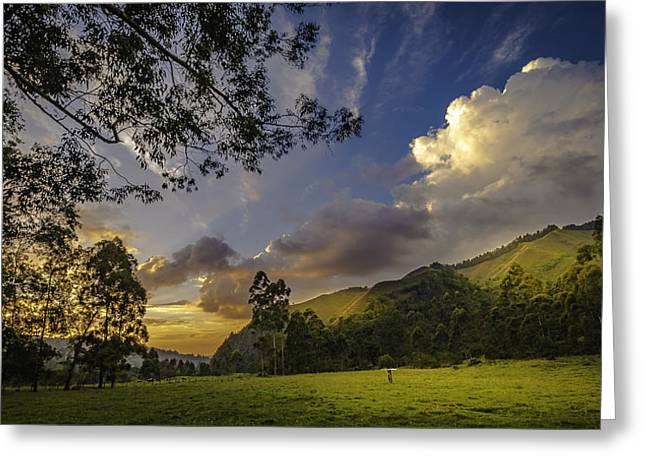 Sunset At Cocora Greeting Card