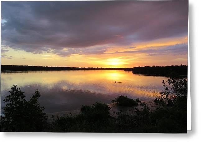 Sunset At Ding Darling Greeting Card