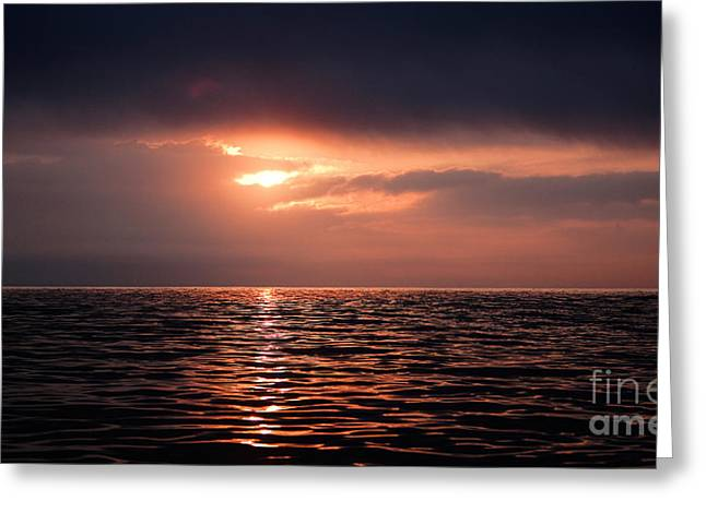 Sunset At False Bay In South Africa Greeting Card by Gerard Lacz