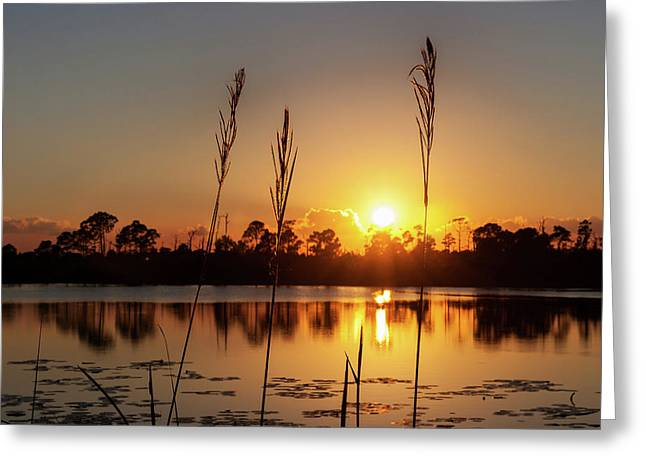 Greeting Card featuring the photograph Sunset At Gator Hole 3 by Arthur Dodd