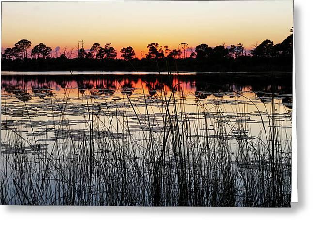 Sunset At Gator Hole Greeting Card