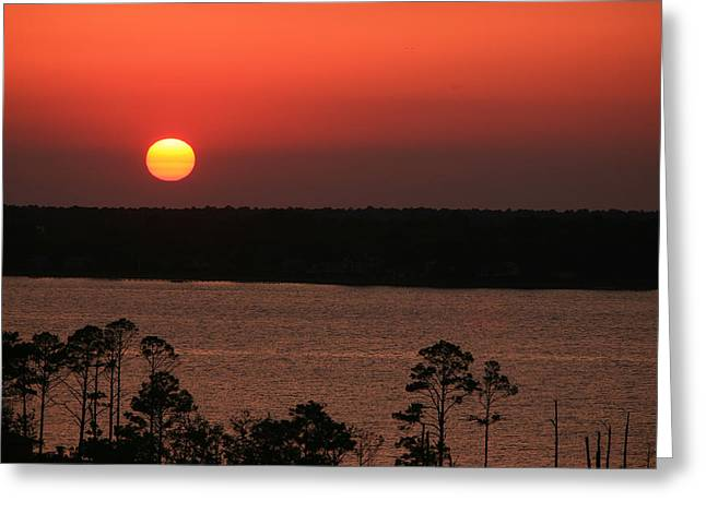 Sunset At Gulfshores Greeting Card by James Jones