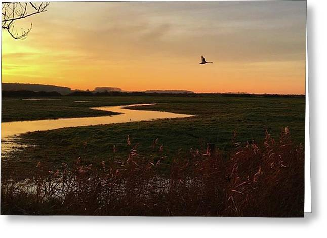 Sunset At Holkham Today  #landscape Greeting Card