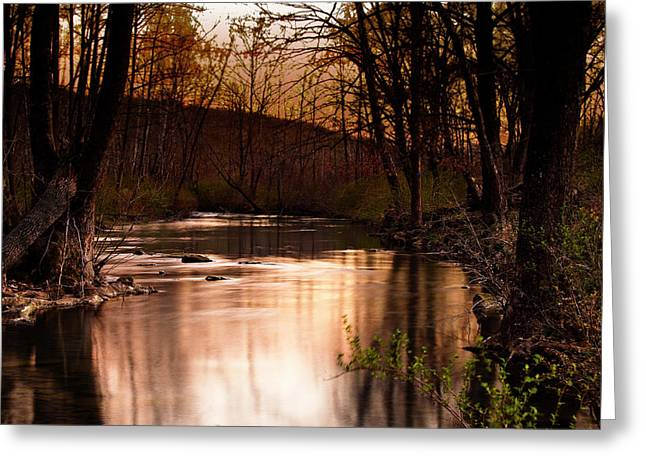 Sunset At King's River Greeting Card by Tamyra Ayles