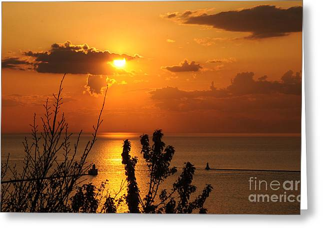 Sunset At Lake Huron Greeting Card by Joe  Ng