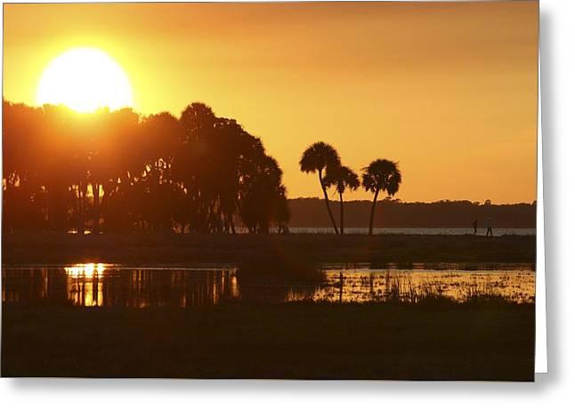 Sunset At Myakka River State Park In Florida, Usa Greeting Card