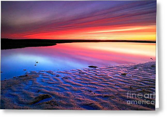 Sunset At Paines Creek Cape Cod Greeting Card by Matt Suess