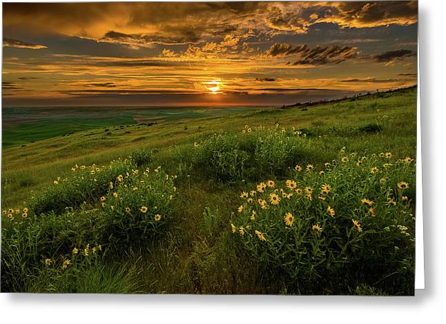 Sunset At Steptoe Butte Greeting Card