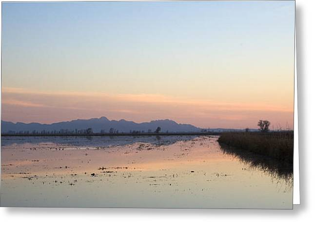 Sunset At Sutter Buttes Greeting Card by Charlie Osborn