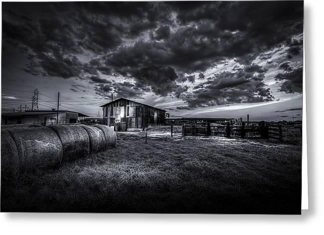 Sunset At The Dairy - Bw Greeting Card
