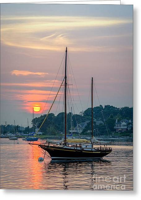 Sunset At The Marina Greeting Card by Scott Thorp