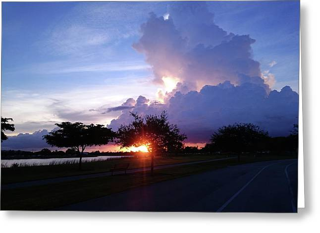 Greeting Card featuring the photograph Sunset At The Park In Miami Florida by Patricia Awapara
