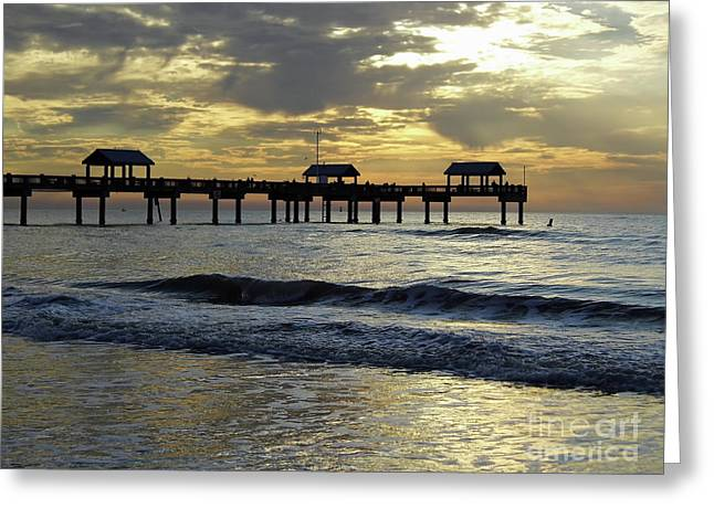 Sunset At The Pier 60 Greeting Card by D Hackett