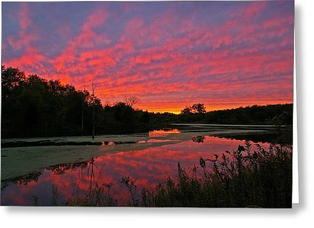 Sunset At The Pond Greeting Card