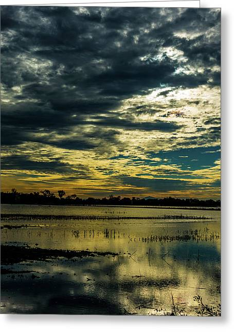 Sunset At The Wetlands Greeting Card