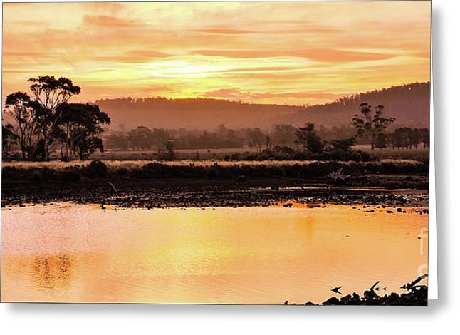 Sunset At Triabunna Tasmania Greeting Card by Lexa Harpell
