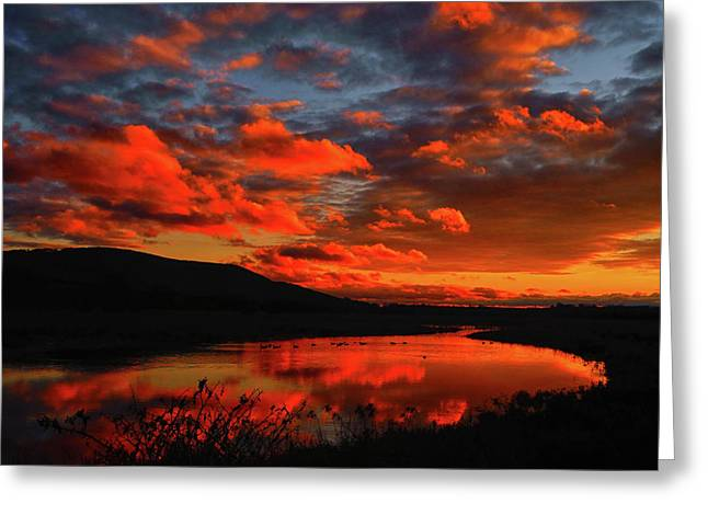 Sunset At Wallkill River National Wildlife Refuge Greeting Card