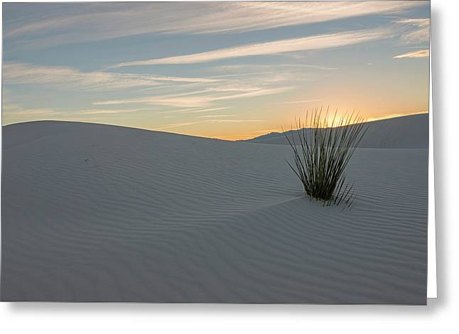 Sunset At White Sands Nm Greeting Card by Loree Johnson
