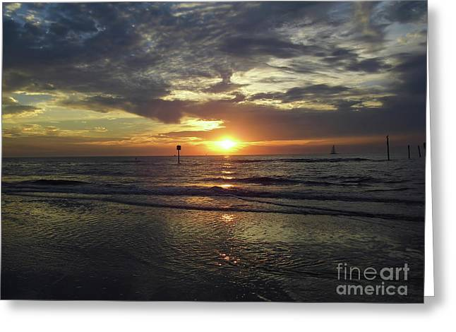 Sunset Beauty At Clearwater Greeting Card by D Hackett