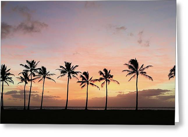 Sunset Behind The Palms Greeting Card