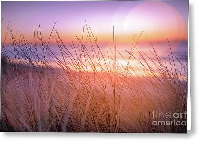Sunset Bokeh Greeting Card by Inger Vaa Eriksen