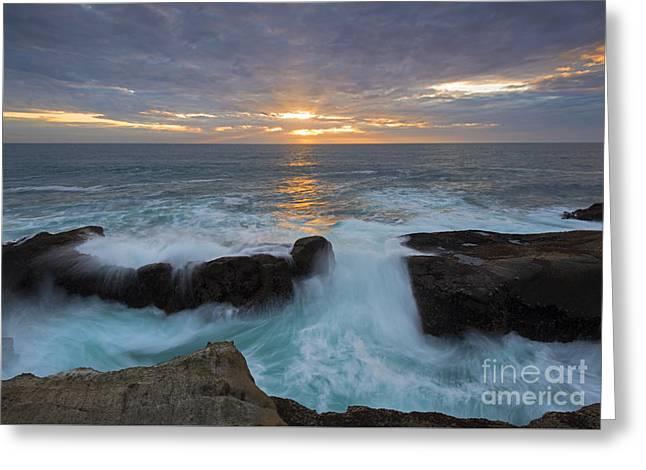 Sunset Breach Greeting Card by Mike Dawson