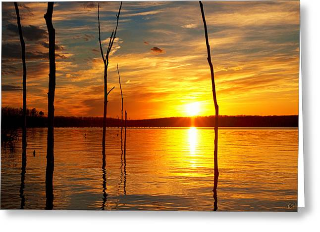 Greeting Card featuring the photograph Sunset By The Water by Angel Cher