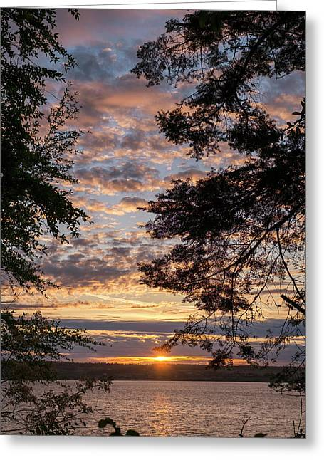 Sunset Caressed By Tree Branch Greeting Card by Mary Lee Dereske