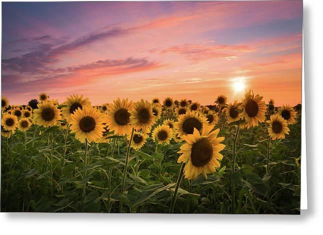Sunset Choir Greeting Card