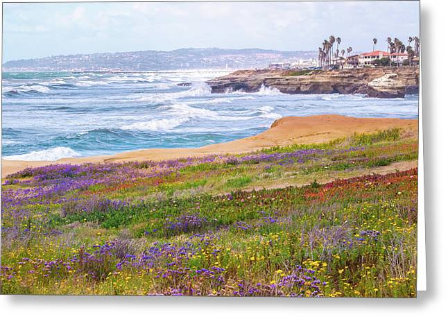 Sunset Cliffs In Spring Greeting Card