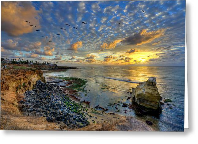 Sunset Cliffs With Brown Pelicans Greeting Card