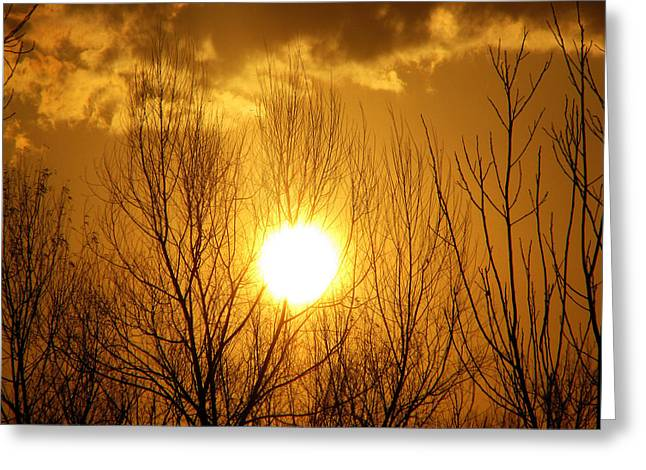 Sunset Greeting Card by Dottie Dees