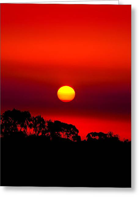 Sunset Dreaming Greeting Card