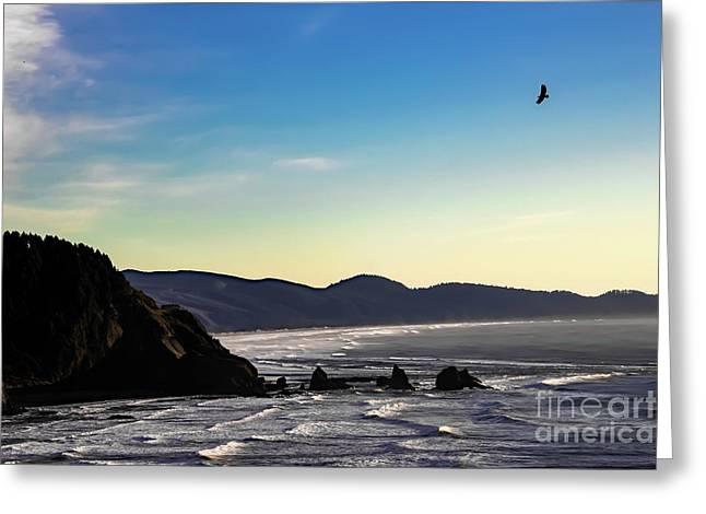 Sunset Eagle Greeting Card by Jon Burch Photography