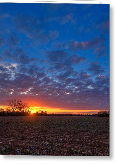Sunset Field Greeting Card