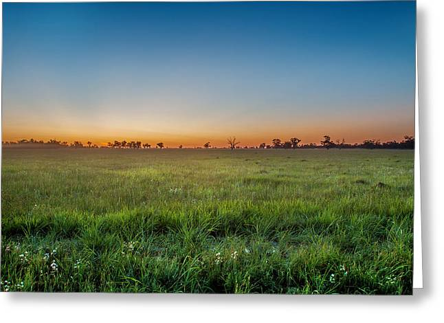 Sunset Fields Greeting Card by Az Jackson