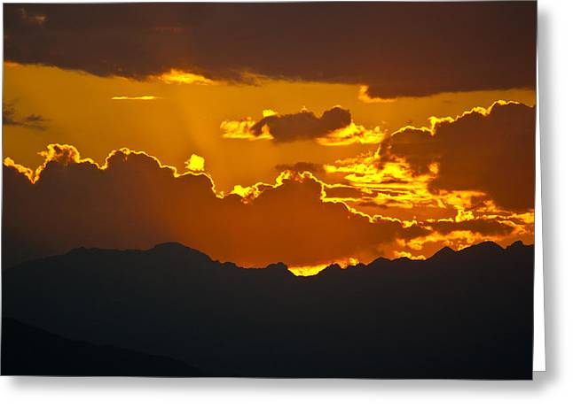 Sunset Fire Greeting Card by Colleen Coccia