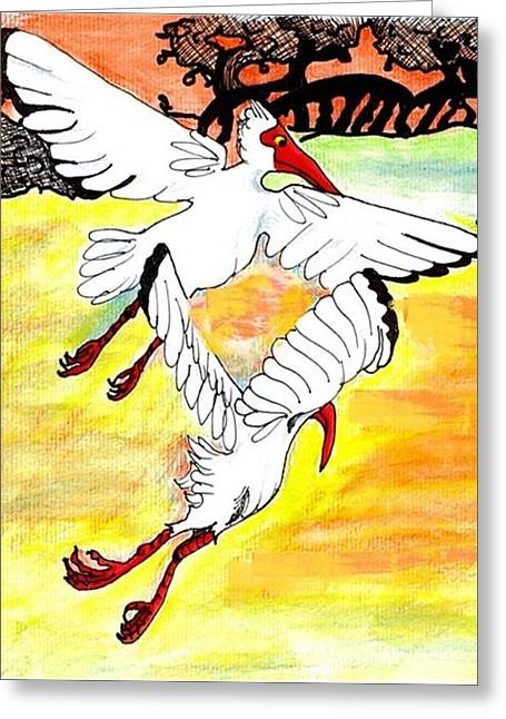 Sunset Flight Greeting Card by Carol Allen Anfinsen