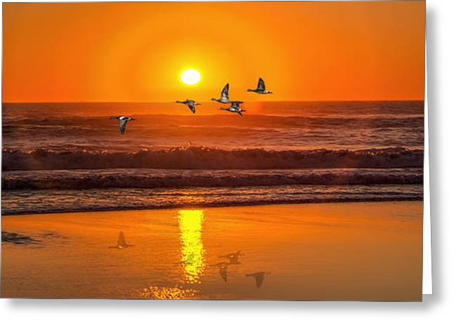 Sunset Flight Greeting Card by Dennis Adams