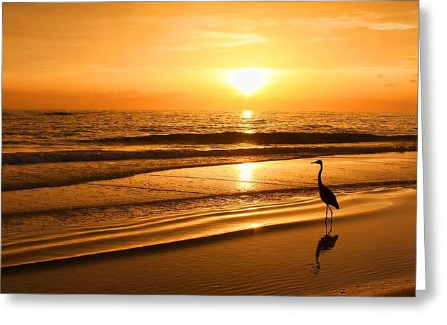 Sunset Gold Greeting Card